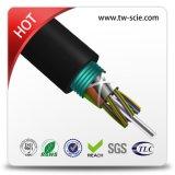 Câble fibre 12 coeurs avec ruban d'acier pour l'utilisation de conduit