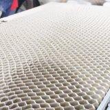 Haus-Haustür-Entwurfs-Lack färbt Metalltür in Kambodscha