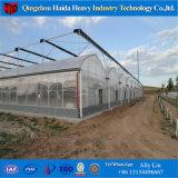 Sistema hidropónico de gases de efecto invernadero de cristal de Venlo agrícola