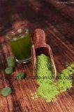 Естественный порошок травы ячменя Superfood зеленый