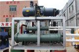 La retroalimentación de alta calidad gran escama la máquina de hielo para la carne Sdwt-30tr2