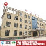 La Chine Silver Star marque pour les couches de la cage de couche