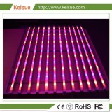 Keisue LED coltiva il sistema chiaro per la crescita delle piante