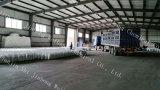 La meilleure éclaille de bicarbonate de soude caustique de constructeur (SGS/BV/CIQ)