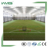 A Erva de futebol profissional/ Futsal em relva artificial