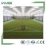 Professional Soccer de l'herbe/ Futsal de gazon artificiel