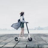 販売のための小型バランス車の自己のバランスのスクーターの電気スクーター