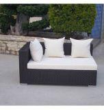 Комплекты мебели патио салона Sun сада Wicker с валиком