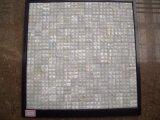Mosaico blanco del shell 20*20 del agua dulce