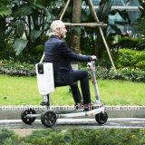Citycoco Harlley три колеса электрический скутер/дешевые электрический Trike /E-велосипед