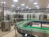 De volledige Automatische het Vullen van de Was het Afdekken het Vullen van het Drinkwater Bottelmachine van de Verpakking