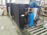 Eis-Maschine der Schuppen-1000kgs für Nahrung Freshen