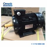 Ms Series Aluminum Electrical Motors