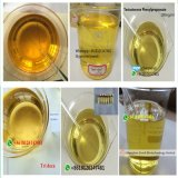 Poudre crue CAS53-39-4 d'Anavar de stéroïdes anabolisant oraux de pureté de 99%