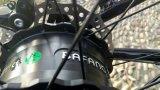 Bikes опционных цветов электрические с тучной автошиной