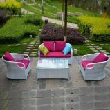 Sofà esterno del rattan di svago dell'hotel del giardino della villa del balcone del giardino