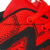 Les espadrilles des femmes colorés exécutant des chaussures de sports