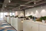 현대 작풍 우수한 직원 분할 워크 스테이션 사무실 책상 (PM-025)
