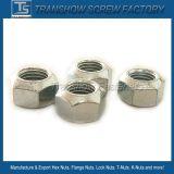 DIN980/V 통용 토크 유형 육각형 견과