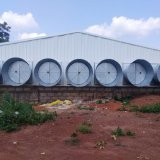 Il pollame prefabbricato della struttura d'acciaio alloggia per il pollo sulla vendita