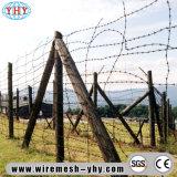 電流を通された庭の塀の有刺鉄線は動物を離れる