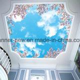 Resistência do risco da impressão da transferência térmica nenhum papel de parede de cheiro da tela