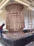 Het decoratieve Frame van Birdcage van het Roestvrij staal, de Dienst van de Vervaardiging van het Metaal van de Douane