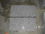 Luz barata - o granito cinzento G603 inflamado/lustrou/telha revestimento de Bushhammered