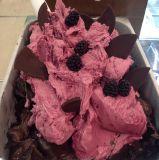 큰 수용량 아이스크림을%s 소형 냉장고 전시