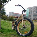 2017 جديدة [500و] إطار العجلة سمين كهربائيّة درّاجة [لكد] عرض [إ-بيك]