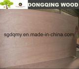 Madera contrachapada comercial de la madera contrachapada de la chapa china de Bintangor con 18m m 16m m
