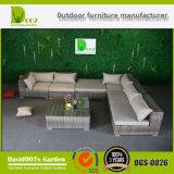 Mobilia esterna di /Leisure della mobilia/mobilia dell'hotel