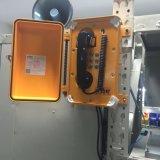 耐候性があるトンネルの電話Pagaシステム電話