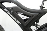 1000W 중앙 드라이브를 가진 최신 판매 뚱뚱한 E 자전거