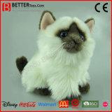 Gatto molle realistico di Birman del giocattolo dell'animale farcito della peluche di ASTM