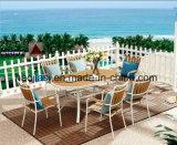 /Rattan ao ar livre/cadeira & tabela de Polywood da mobília hotel do jardim/Patio/ajustadas (HS3259C& HS 6112DT)