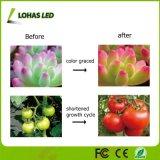 O diodo emissor de luz cheio de Specturm cresce o diodo emissor de luz 13.5W claro cresce a câmara de ar leve para a planta de jardim da planta interna