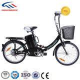 Foldable Aluminum Alloy E-Bike