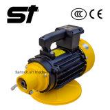 Type interne vibrateur concret électrique de machines de construction