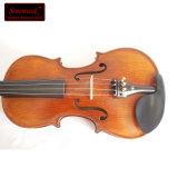 Il professionista ha avanzato i violini del Brown scuro di rivestimento della macchia