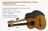 BV/SGS 증명서 (SC02ARB)를 가진 Aiersi 고아한 기타