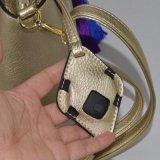 경보 조정 (ZXK1837)를 가진 고전적인 소형 디자이너 형식 핸드백