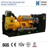 Generador de gas de 250 kVA con motor Googol 50Hz