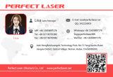 Macchina di cuoio del Engraver del laser del CO2 di taglio del PVC di legno del panno