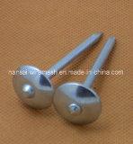 Clous Twisted galvanisés de toiture de partie lisse avec la rondelle