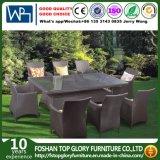 Los muebles del jardín de la rota fijan las sillas para los muebles al aire libre del patio