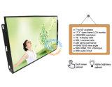 """17.3 """" monitores do LCD do frame aberto com definição 1600*900 do 16:9 (MW-171ME)"""