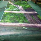 高品質の鮮やかな図形美しい景色のビニールの壁紙のデジタル印刷
