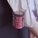 2017 최신 금속 사슬은 Nikel 장식 못 어깨에 매는 가방 소형 귀여운 대중적인 핸드백 Sy7916를 자루에 넣는다