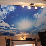 Nuage de qualité et impression lustrée de film de plafond d'extension